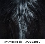 Stock photo andalusian black horse with long mane portrait close up can be used for decoration interior 690132853