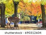 the fall season with beautiful... | Shutterstock . vector #690312604