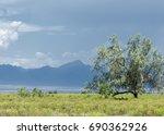 steppe  prairie  veld  veldt.... | Shutterstock . vector #690362926