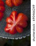 beef tomato | Shutterstock . vector #690466249