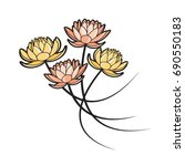 four lotus flowers in color... | Shutterstock .eps vector #690550183