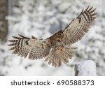 Eurasian Tawny Owl In Flight