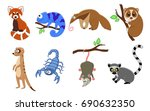 set of 8 exotic animals in a...