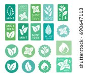 mint leaves badges  banners and ... | Shutterstock .eps vector #690647113