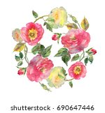 beautiful watercolor roses... | Shutterstock . vector #690647446