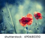 abstract red poppy on aqua tone ... | Shutterstock . vector #690680350
