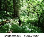 Small photo of Father figure hiking with child through green sunlit forest on the Necklace Valley Trail in the Alpine Lakes Wilderness