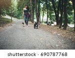 Stock photo dog walker with dogs enjoying in park 690787768
