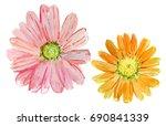 set of watercolor drawing herbs ... | Shutterstock . vector #690841339