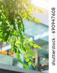 green eco building office...   Shutterstock . vector #690947608