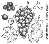 sketch ink vintage grape set... | Shutterstock .eps vector #690991030
