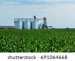grain in corn field. set of... | Shutterstock . vector #691064668