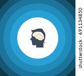 isolated intellect flat icon.... | Shutterstock .eps vector #691134850