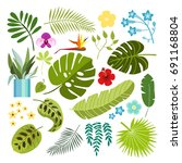 summer tropical graphic...   Shutterstock .eps vector #691168804