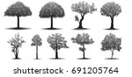 set of tree silhouette on white ... | Shutterstock .eps vector #691205764