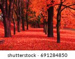 red autumn park as nice natural background - stock photo
