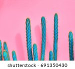 cactus fashion set. sweet... | Shutterstock . vector #691350430