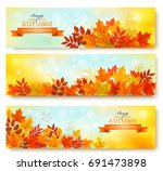 set of three nature banners... | Shutterstock .eps vector #691473898