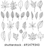 autumn leaves in contour | Shutterstock . vector #691479343