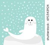 white sea lion. harp seal pup... | Shutterstock .eps vector #691543924