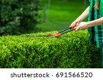 garden scissors  background | Shutterstock . vector #691566520