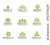 tree and leaves logo set green... | Shutterstock . vector #691575619