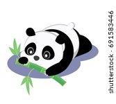 baby panda  | Shutterstock .eps vector #691583446