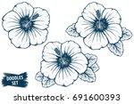 hibiscus flower sketch....   Shutterstock .eps vector #691600393