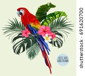 beautiful floral exotic vector... | Shutterstock .eps vector #691620700
