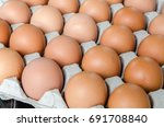 eggs | Shutterstock . vector #691708840