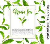 realistic leaves of green tea.... | Shutterstock .eps vector #691799458