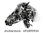 double exposure of a horse and... | Shutterstock . vector #691890934