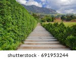 phetchabun mountain park   Shutterstock . vector #691953244