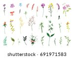 a large set of plant elements   ... | Shutterstock . vector #691971583