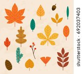 autumn leaves set. flat design... | Shutterstock .eps vector #692037403