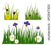 green grass border plant lawn... | Shutterstock .eps vector #692047303