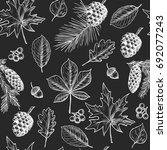 autumn  leaves  berries  fir... | Shutterstock .eps vector #692077243