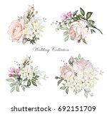 watercolor flowers. floral... | Shutterstock . vector #692151709