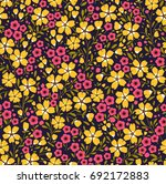 simple cute pattern in small... | Shutterstock .eps vector #692172883