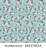 floral pattern. pretty flowers... | Shutterstock .eps vector #692174014