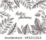 autumn background with hand... | Shutterstock .eps vector #692211313