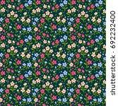 vector seamless pattern. pretty ... | Shutterstock .eps vector #692232400