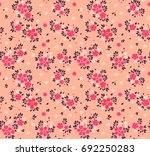 vector seamless pattern. pretty ... | Shutterstock .eps vector #692250283