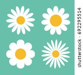 Camomile Icon Set. White Daisy...
