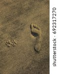 a human footprint in the sand... | Shutterstock . vector #692317270