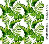 tropical hawaii leaves palm... | Shutterstock . vector #692385778