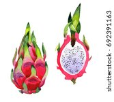 exotic pitaya healthy food in a ... | Shutterstock . vector #692391163