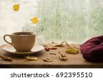 cup of autumn tea  coffee ... | Shutterstock . vector #692395510