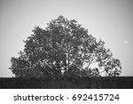 italian village | Shutterstock . vector #692415724