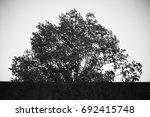 italian village | Shutterstock . vector #692415748